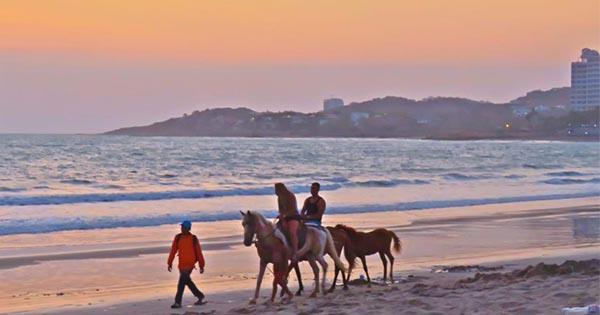 Paseo en caballos por el malecón de la playa de villamil