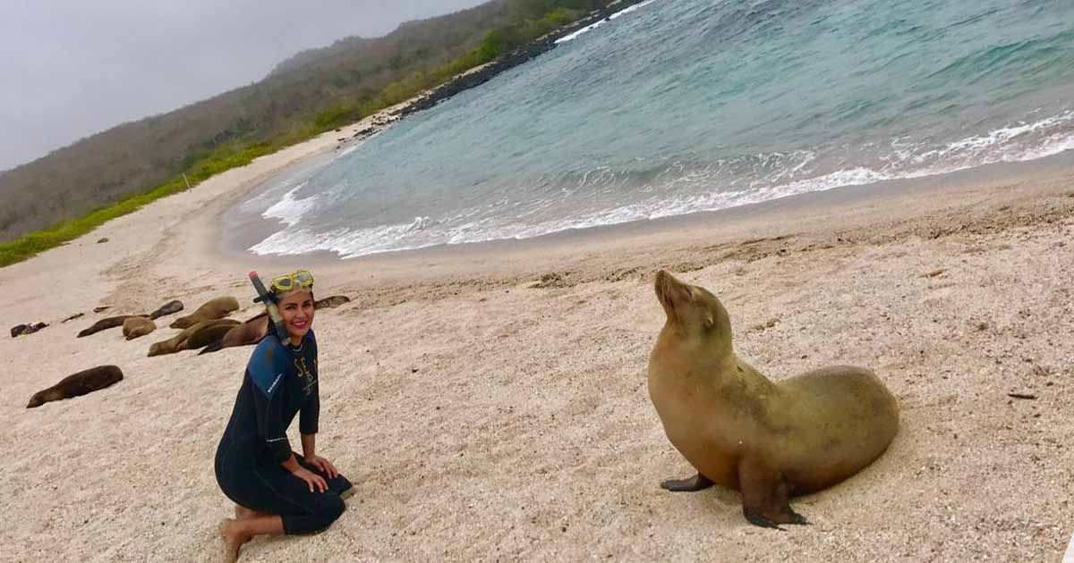Armonía entre las especies animales y los turistas en las islas Galápagos