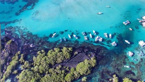 Bahía de Concha de Pera contacto con la fauna