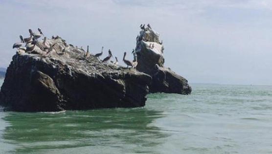 Playa de Pedernales