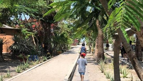 Corredor a la Playa de Jambelí