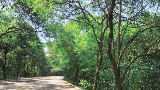 Ruta al Parque Nacional Machalilla