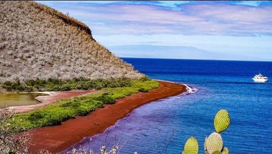 Isla Rábida en Galápagos|